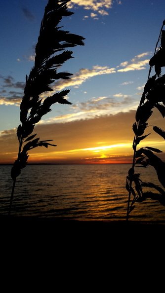 2013-11-10-Pensacola-Bay-Sunrise.39.jpg